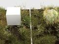Tvorba trávy v CINEMĚ 4D - 1.díl