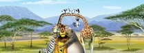 Madagascar 2 The Crate Escape